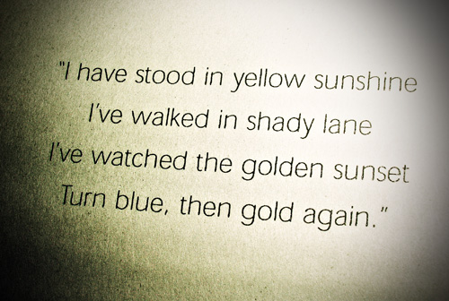 I Have Stood In Yellow Sunshine